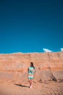 Type Skirts / Dresses adidas Originals WMNS Borbofresh Track Skirt