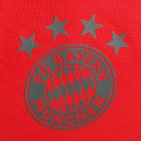 Type Backpacks adidas FC Bayern Munich 2018/19 Team Bag