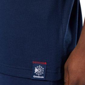 Type Shirts Reebok Classics Disruptive Tee