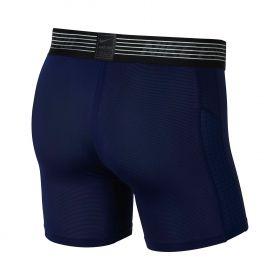 Type Shorts Nike Pro Shorts
