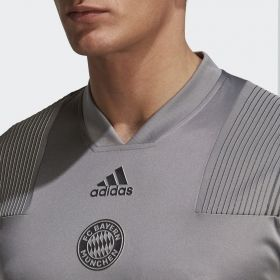 Type Shirts adidas FC Bayern Icon Tee