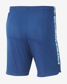 Type Shorts Nike FC Barcelona 2018/19 Dri-FIT Squad Shorts